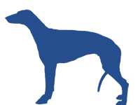 Greyhounds